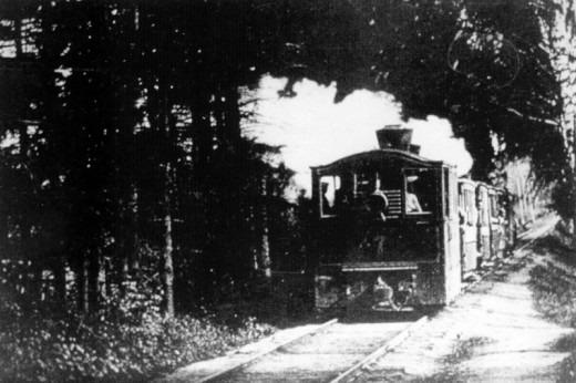 1898 год. Путь у дачи Видоновых. По маршруту паровичка №8