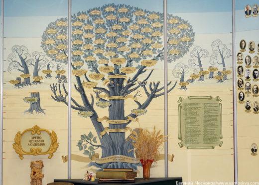 При Академии открыты несколько музеев, чьи экспозиции расскажут об истории Тимирязевки и о некоторых отраслях сельского хозяйства