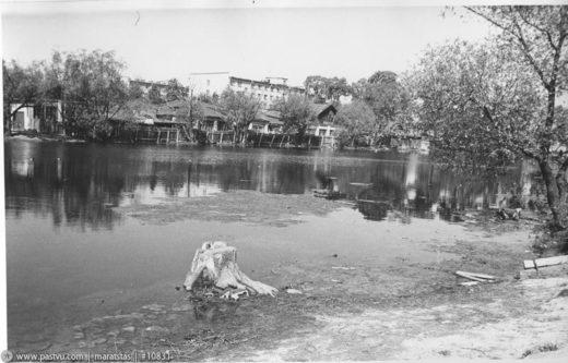 Нижний Фермский пруд, 1978 год
