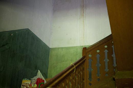 Живут среди мебели и вещей, которые за 150-летнюю историю семьи в этом доме принадлежали ученым, академикам, художникам. Дом Василия Вильямса не просто жилой — он живой, со старым роялем и зеленой лампой на подоконнике.