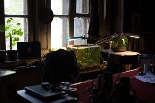 Рабочий стол Василия Вильямса.
