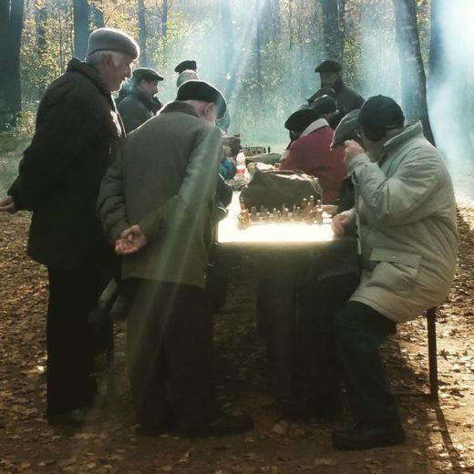 Игра в шахматы в Тимирязевском парке. Фото: Георгия Филатова