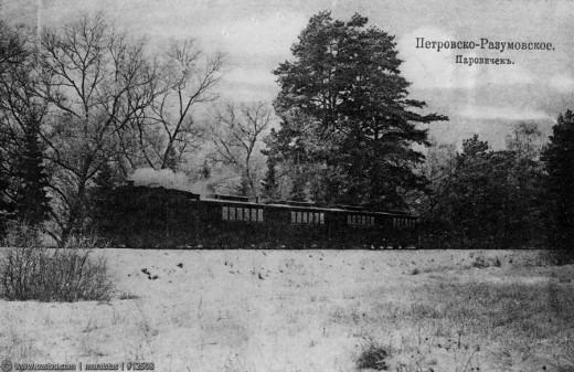 """""""Близ Лесной опытной дачи"""". Фото ориентировочно сделано в 1911 году."""