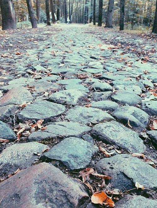 Часть старой дороги сохранилась до наших дней — это брусчатка в Тимирязевском парке. Ее можно увидеть, пройдя прямо от входа в парк на повороте улицы Вучетича к Тимирязевской.