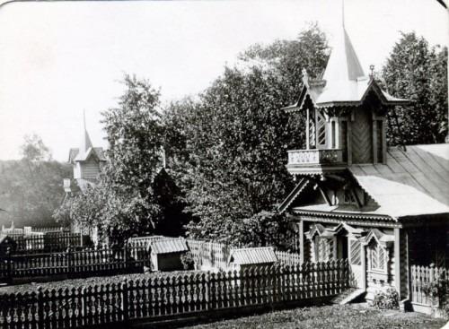 Двор для цесарок на нормальной ферме Быковского.