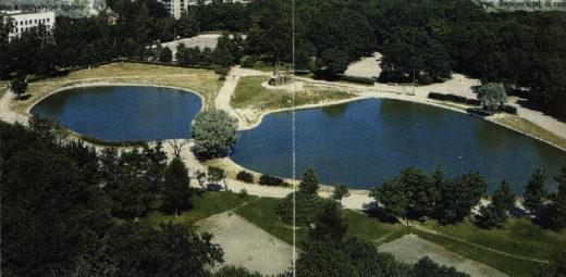 """Название """"Дубки"""" парку и улице было дано не более полувека назад, по укоренившемуся прозвищу этого места."""