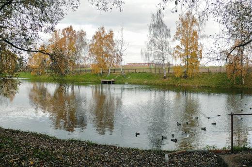 На берегу Нижнего Фермского (Фермерского) пруда находилась Машинно-тракторная станция.