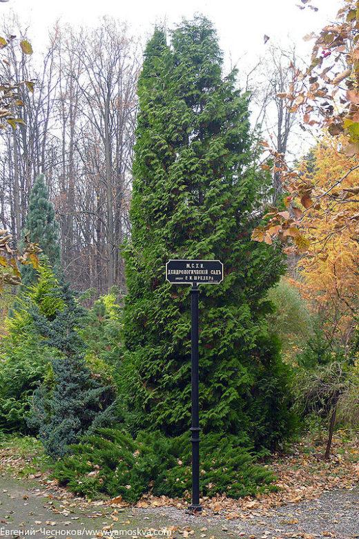 На Пасечной улице напротив пасеки находится Дендрологический сад имени Шредера (Арборетум), основанный в 1870 году.