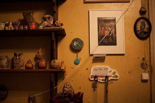 Совы — хранители дома Вильямс. Мария коллекционирует их много лет. Сегодня в доме около тысячи сов разных видов, форм и расцветок.
