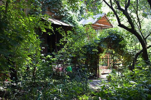 солнечный день в саду прохладно, после дождей — грязно и сыро. Светло здесь бывает только весной.